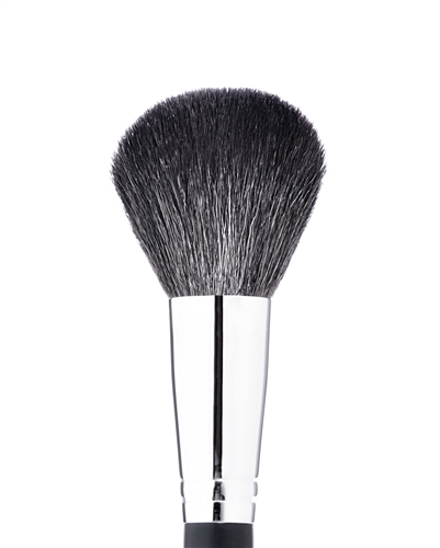 Mikasa F100 - Powder Brush